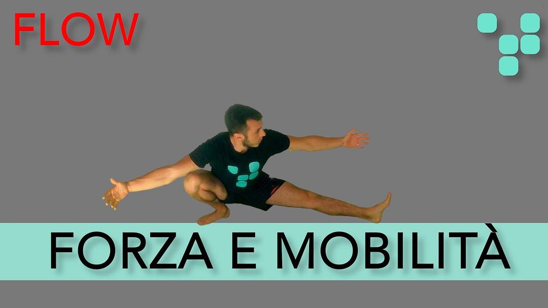 flow forza mobilità